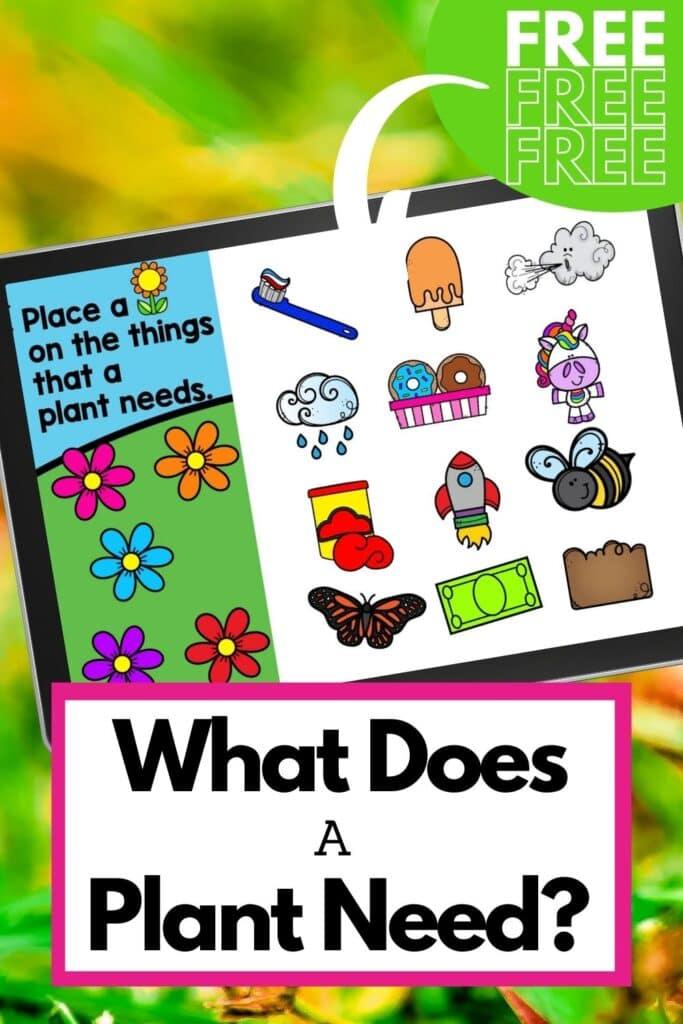 Digital plant needs worksheets for kindergarten