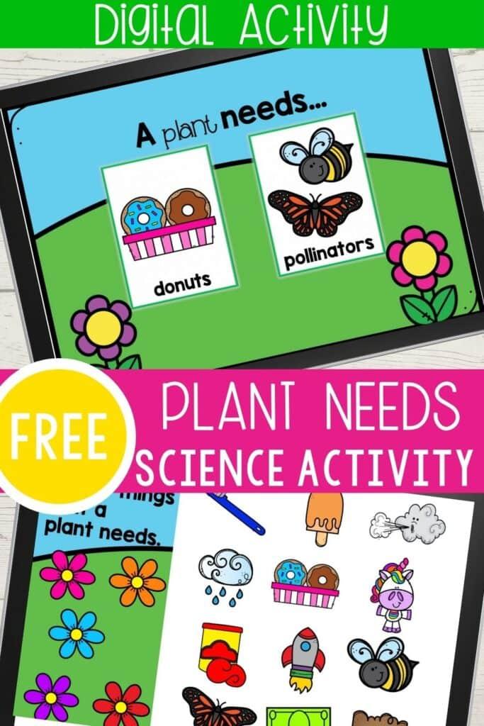 What do plants need to grow digital kindergarten science activity