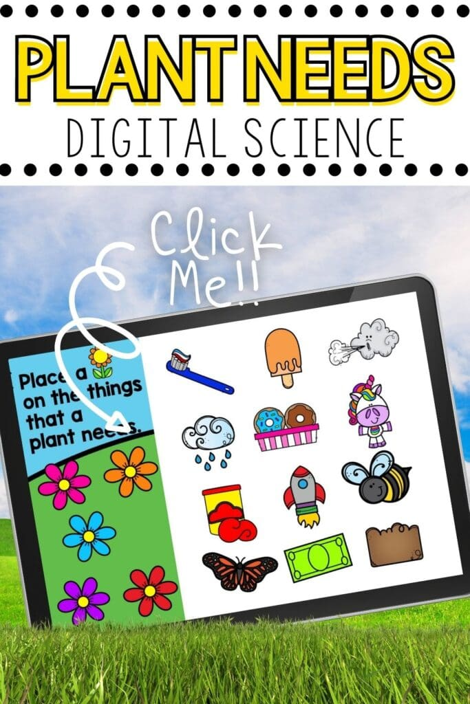 needs of a plant kindergarten science activity Google Slides and Seesaw