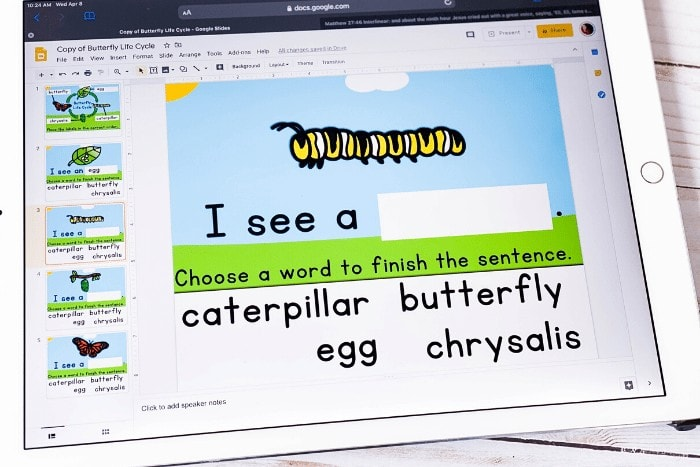 Free butterfly life cycle activity for kindergarten and 1st grade. These free Google Slides and Seesaw butterfly life cycle activities are perfect for spring and insect science activities.