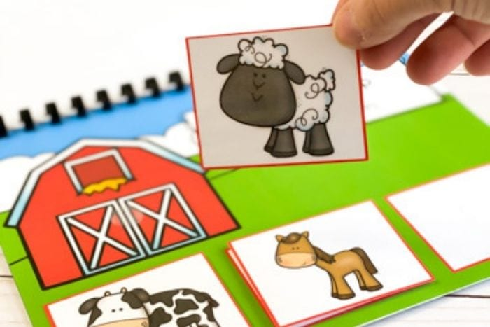 A child's hand holding a sheep picture card.