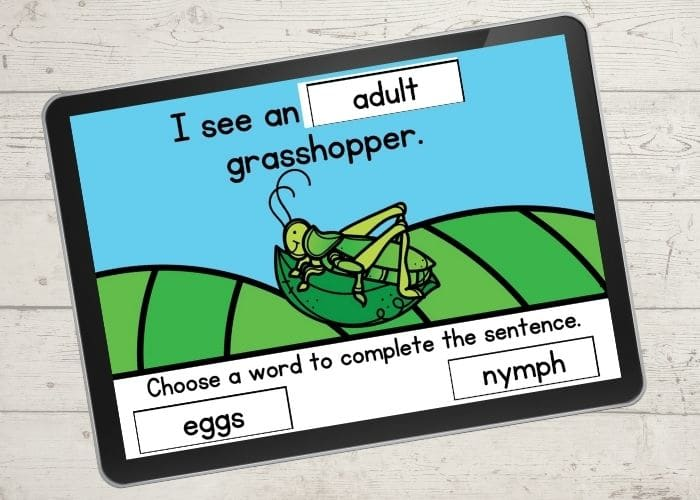 The Digital Grasshopper Life Cycle Activity slide for