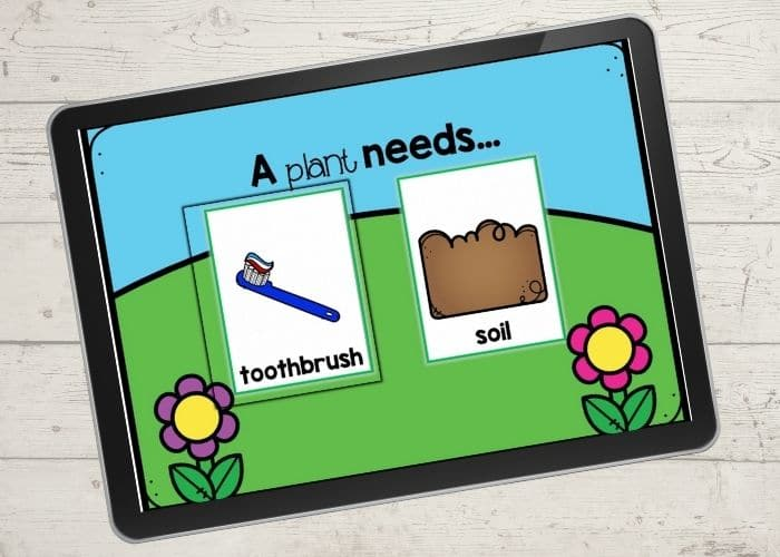 what does a plant need digital activity screenshot: Choose a picture: