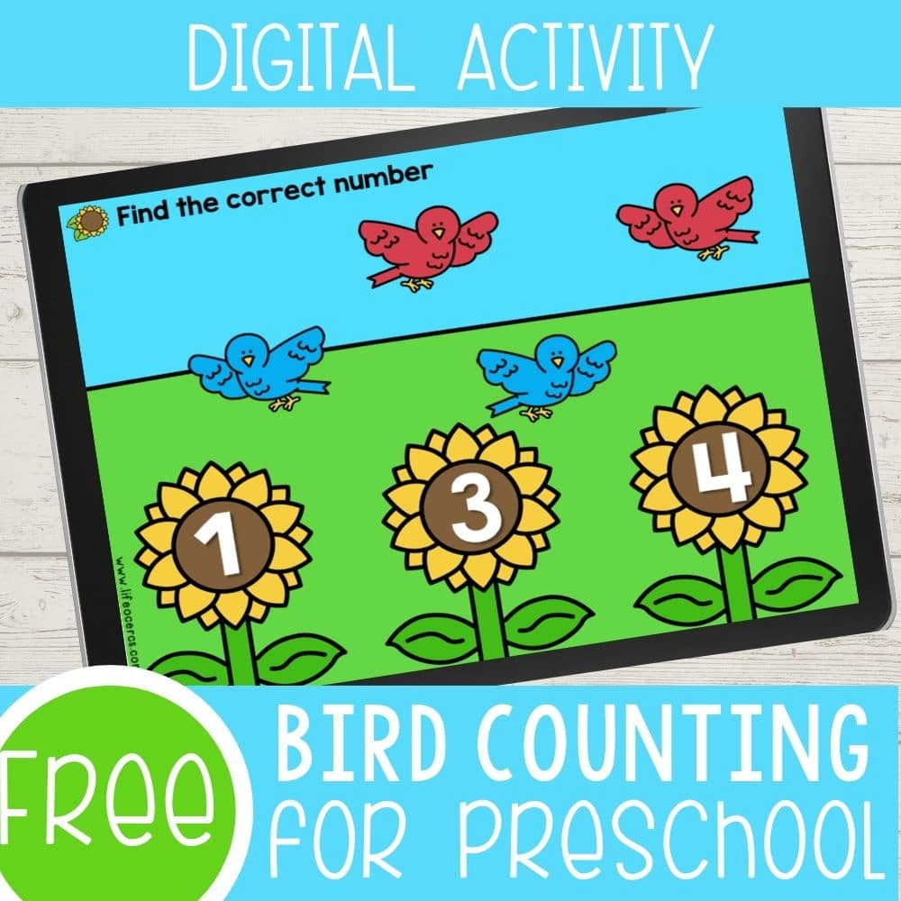 Digital Bird Theme Preschool Counting Activities featured square image